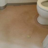 トイレのワックス剥離洗浄のサムネイル